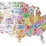 Understanding and mapping ZIP Codes