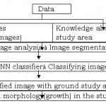 Object Oriented Image Analysis For Urban Development and Management