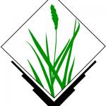 GRASS GIS: Open Source GIS