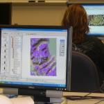 Essential Skills for a GIS Analyst