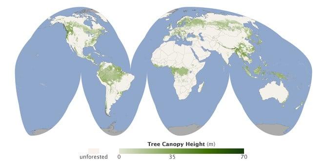 470376main1_globaltreecanopy-map-670