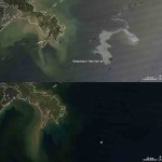 Capturing the Gulf of Mexico Oil Slick