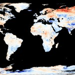 Global Datasets from NASA's Earth Observatory