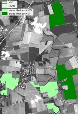 Cornfield classification determinations using a WorldView-2 satellite image acquired on August 10, 2010. The fields in light green are classified as organic (KMO) and the ones shaded dark green are classified as conventional (KM). An accuracy of +90% was obtained on the classification between organic and conventional.   Credits: VISTA