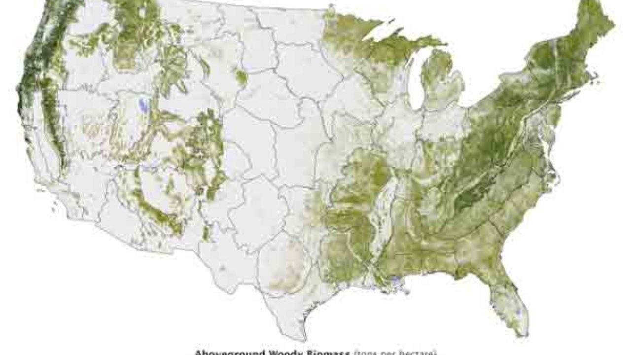 National Forest Map and GIS Data ~ GIS Lounge