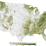 National Forest Map and GIS Data