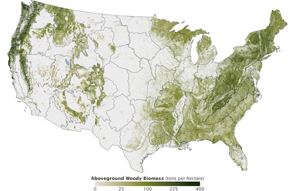 Aboveground Woody Biomass Map by Josef Kellndorfer and Wayne Walker.