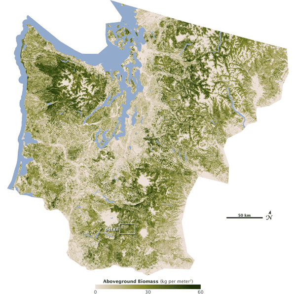 Pacific Northwest Forest Area.