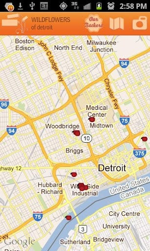 Wildflowers of Detroit Rhus App for Android
