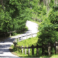 The Gainesville-Hawthorne rail trail in Gainesville, Florida is a 16 mile long multi-use trail. Credit: Florida State Parks.