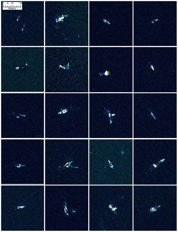 A selection of 20 comparable false colour image chips (bands 1-8-5) of probable whales found by the automated analysis. Several of the images could be interpreted as whale pairs, or as a mother and calf, others may be displaying behaviour such as tail slapping, rolling or blowing. On several images there is a strong return at one end of the feature which is mostly likely the calluses on the whales head. Reprinted under a CC BY license with permission from British Antarctic Survey and DigitalGlobe.