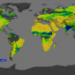 Mapping Soil Moisture from Space