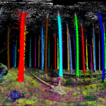 Smart Tree Logging with Remote Sensing