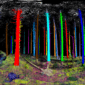 3D tree scan.