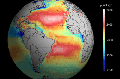 global-ocean-acidity-map