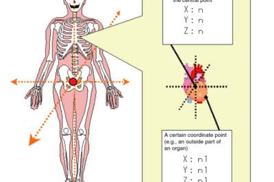 Image: Making a Human Body Map -- Pasco Corporation