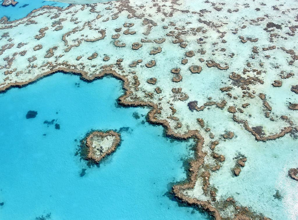 Heart Reef, part of the Great Barrier Reef near Airlie Beach, Whitsunday Islands, Queensland. Photo: Ayanadak123, Mediawiki, CC BY-SA 4.0