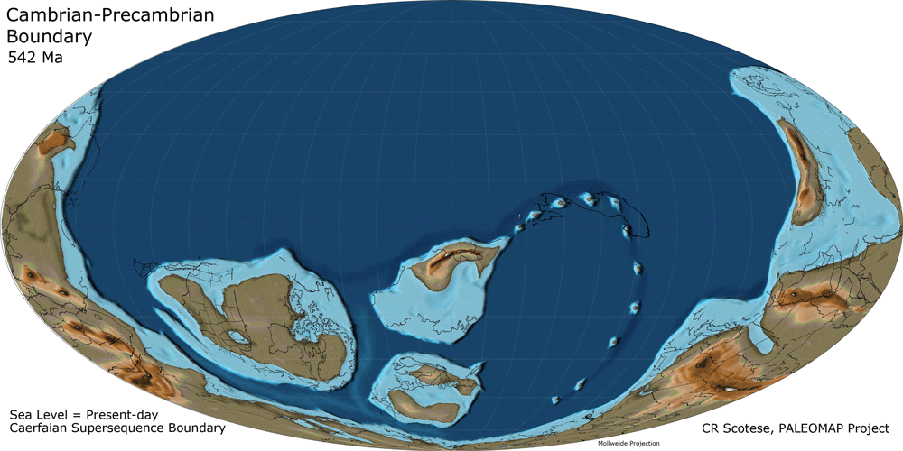 Reconstructed Earth from 542 million years ago. Scortese, PaleoMap Project.
