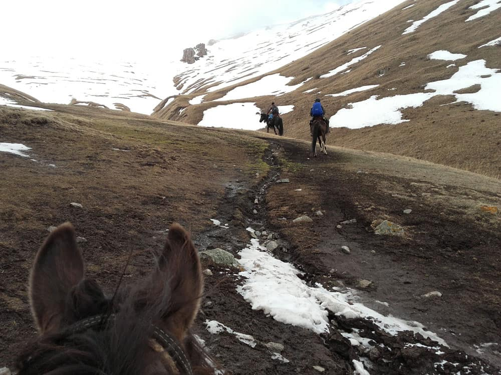 The expedition was carried out on horseback and by car