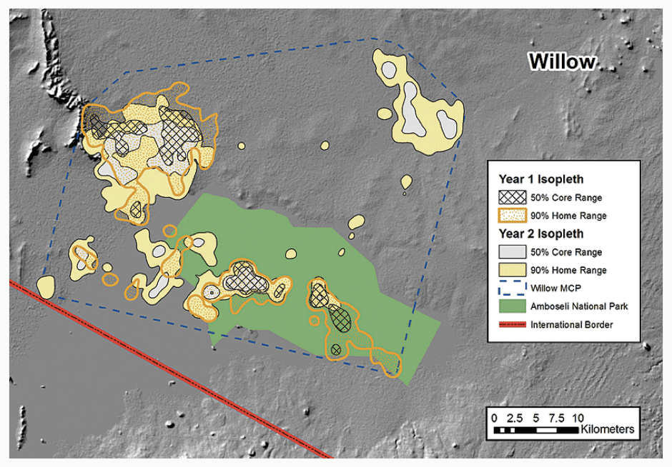 "Figure 2: Map of the elephant individual ""Willow's"" annual ranges in the Amboseli National Park Kenya, during the two-year tracking period. It shows that she made a pronounced shift to a new dispersal area in the second year. [5]"