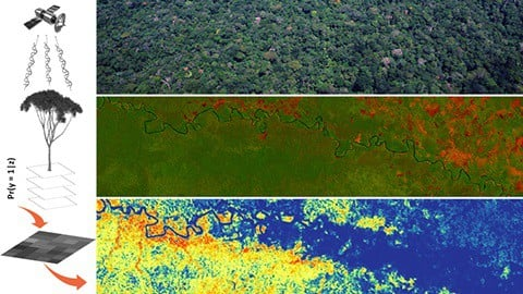 How species distribution models are made. The satellite (top left) registers sunlight reflected by individual trees (middle left) and the forest canopy in general (top right). Reflectance differences can be visualised in a simple colour composite (middle right; forests in green, deforestated areas in red). The machine learning algorithms convert the spectral information from the localities where individual trees of a species have been observed to a map of predicted habitat suitability (bottom; blue represents low and red high suitability). Image: Pablo Pérez Chaves.
