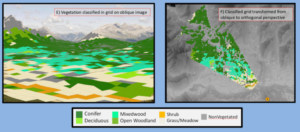 Using the polygon import feature to overlay a spatial grid on imagery to classify grid cells using the WSL Monoplotting Tool. Source: Extracting ecological information from oblique angle terrestrial landscape photographs: Performance evaluation of the WSL Monoplotting Tool, poster.