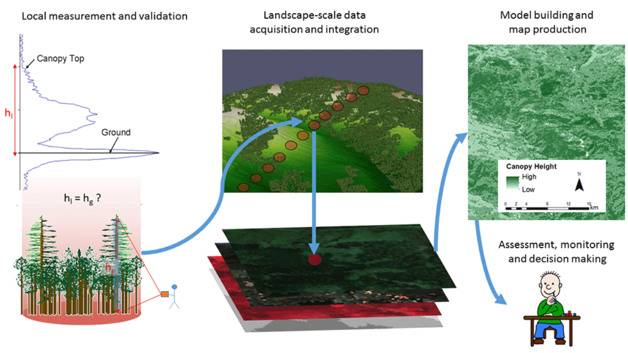 Remote Sensing and Ecological Modelling